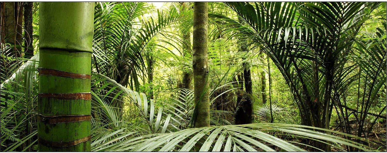 Brise-Vue d/éco Bambous 80/% 250x97cm