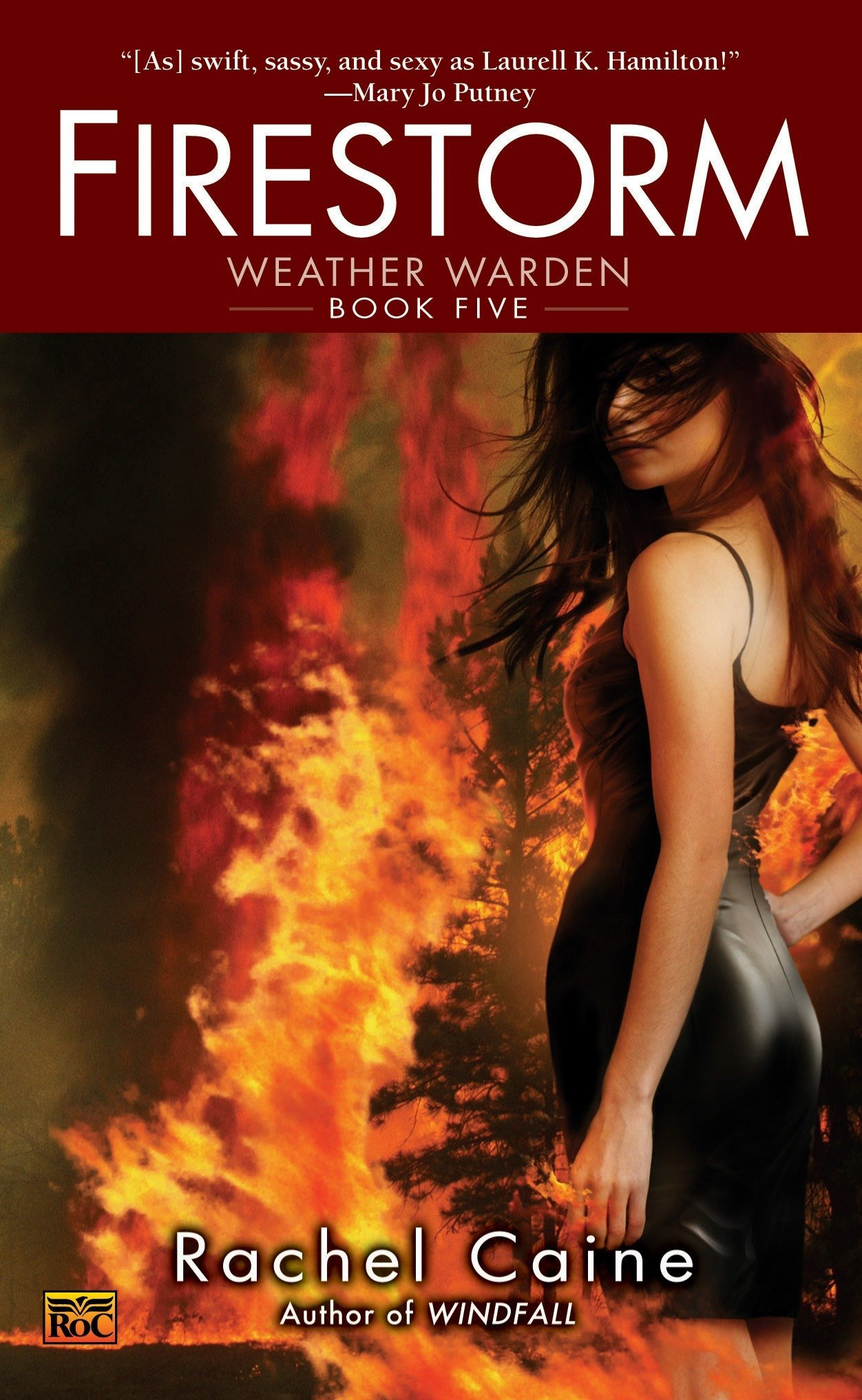 Read Online Firestorm pdf