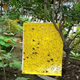 "High Effect 60-Pack(Include 60pcs Wire Tie) 10""X8"" Double-Sided Insect Yellow Sticky Traps for White Flies, Aphids, Leaf Miner"