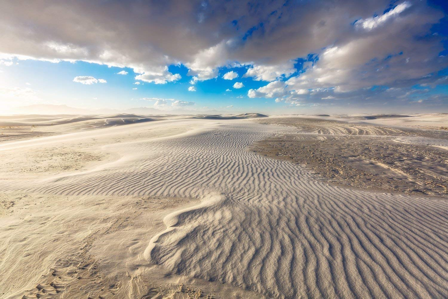 Amazon Com Desert Photography Wall Art Print Picture Of