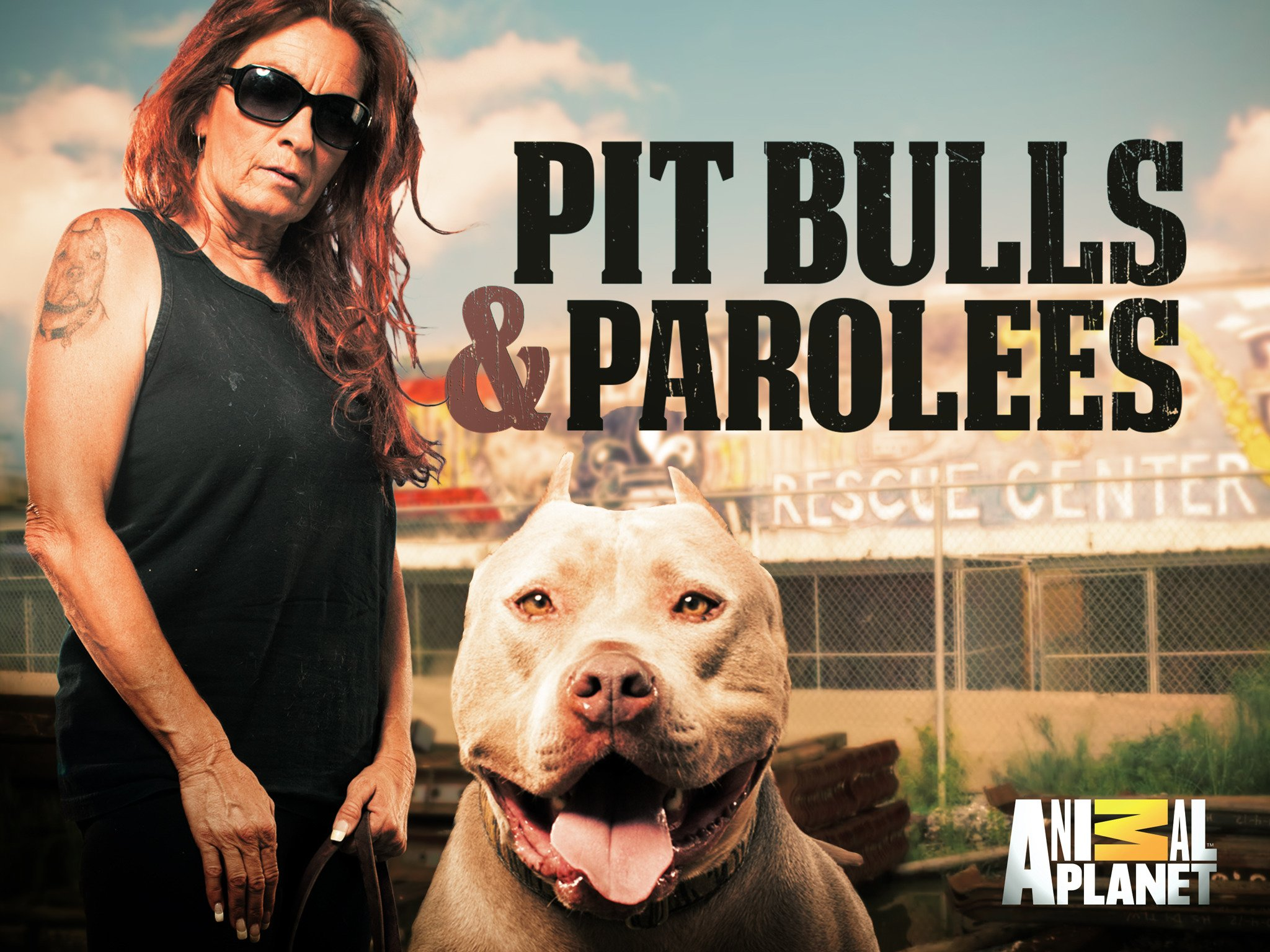 Watch Pit Bulls And Parolees Season 16 Prime Video