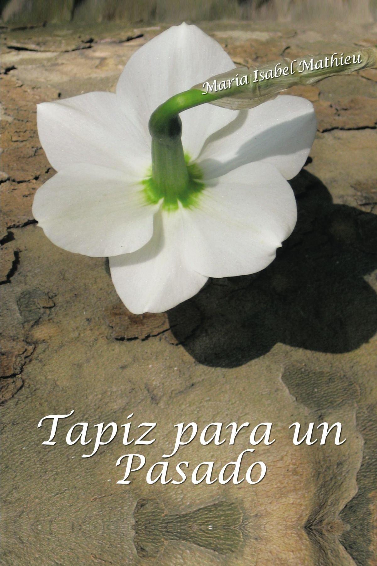 Tapiz Para Un Pasado (Spanish Edition) pdf
