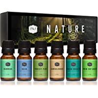 Nature Set of 6 Premium Grade Fragrance Oils - Forest Pine, Ocean Breeze, Rain, Fresh Cut Grass, Sandalwood, Bamboo…