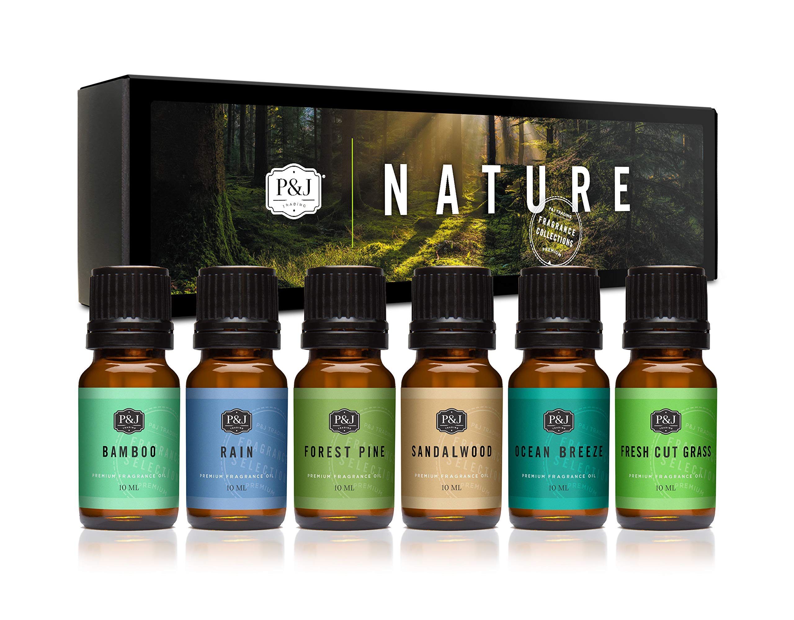 P&J Trading Nature Set of 6 Premium Grade Fragrance Oils - Forest Pine, Ocean Breeze, Rain, Fresh Cut Grass, Sandalwood, Bamboo - 10ml