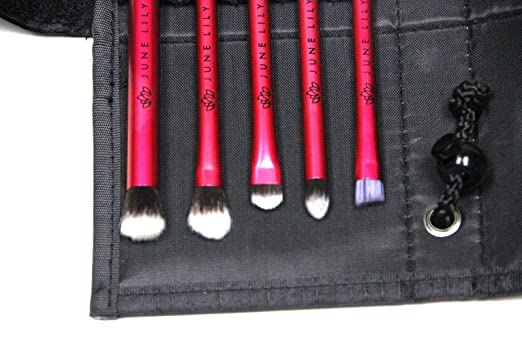 Professional Hypoallergenic Cosmetic Makeup Eye Shadow Brush Kit with Carrying Case (5-Piece Set)
