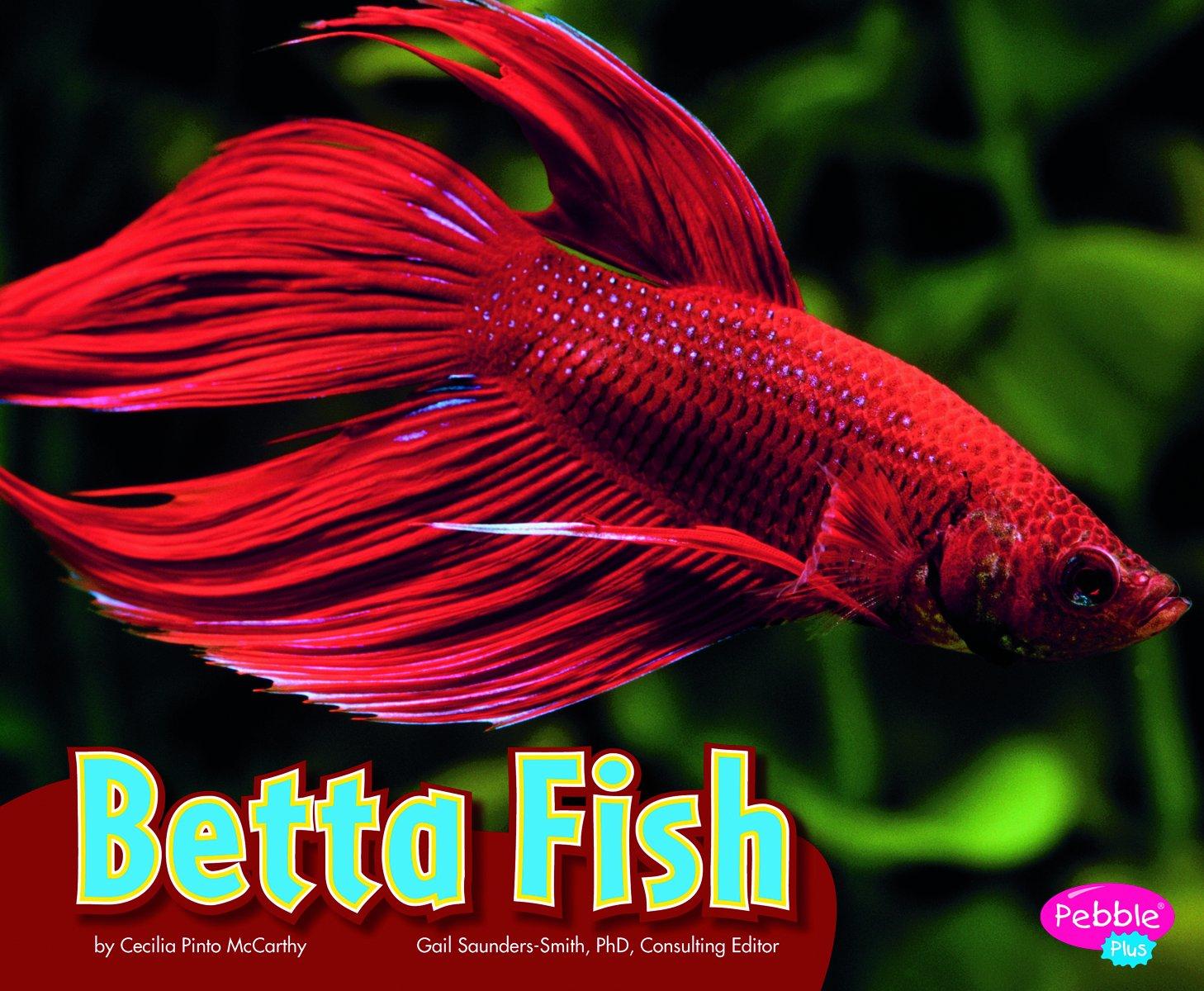 Betta Fish (Colorful World of Animals): Cecilia Pinto McCarthy ...