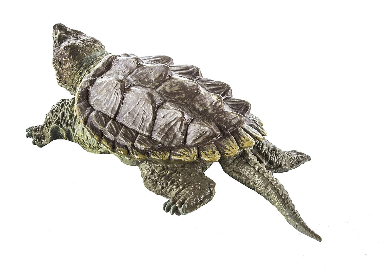 Warning turtles amp tortoises inc - Warning Turtles Amp Tortoises Inc 12
