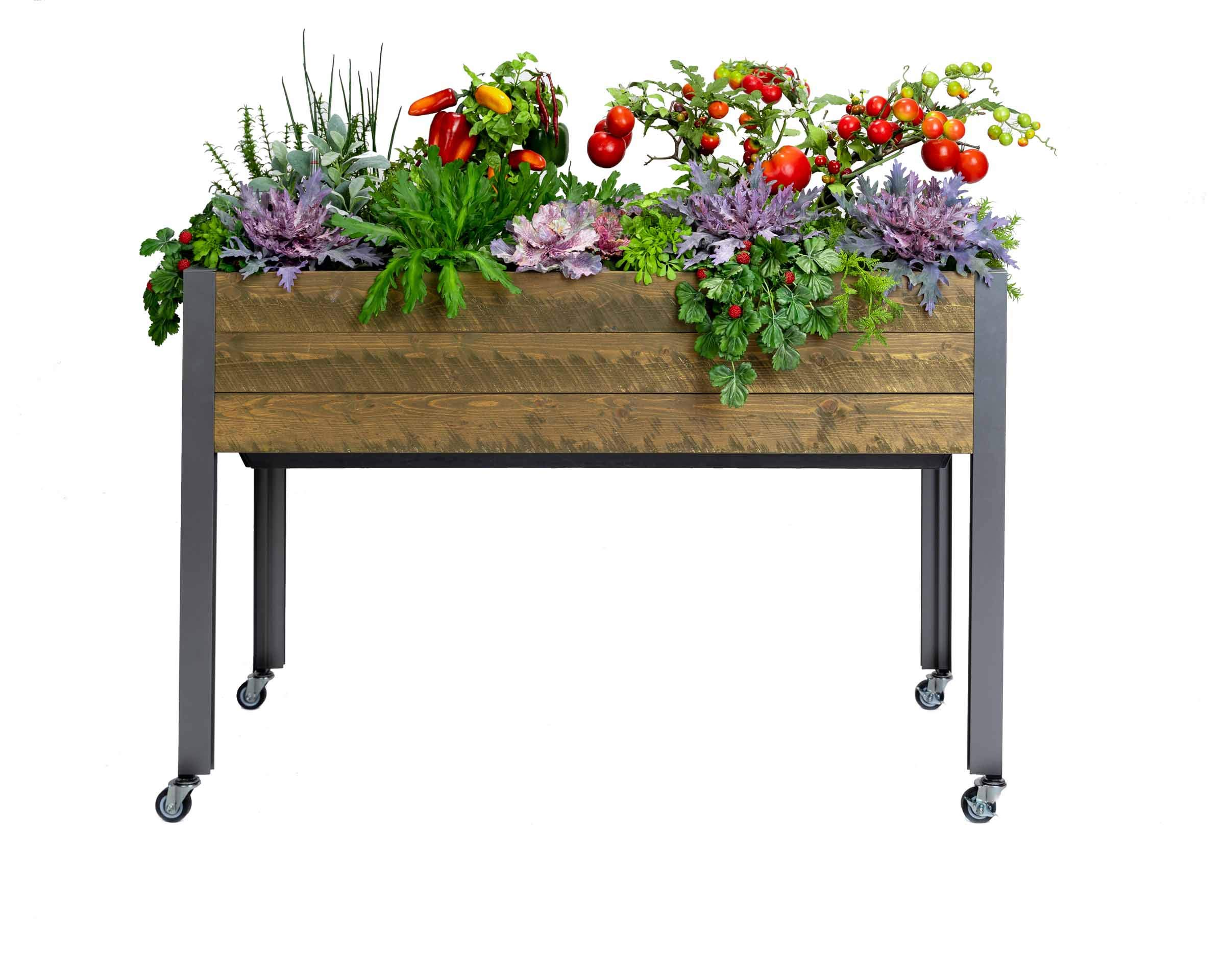 CedarCraft Self-Watering Elevated Spruce Planter (21'' x 47'' x 32''H) - The Flexibility of Container Gardening + The Convenience of a self-Watering System. Grow Healthier, More Productive Plants. by CedarCraft (Image #8)