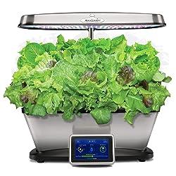 indoor hydroponics garden