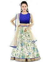 Creativeswilla Girls' Net Blue Lehenga Choli (Kds Bluebhalpuryprintedlehenghas14-15_Free Size)