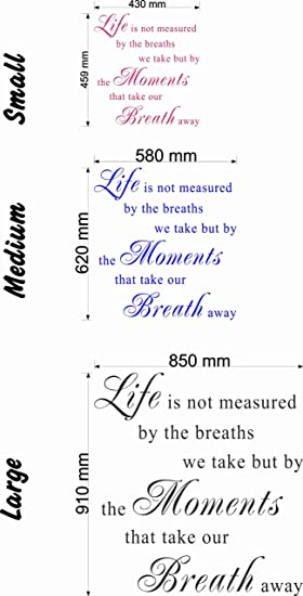 Life Is Not Measured By The Breaths We Take Wall Quote Medium