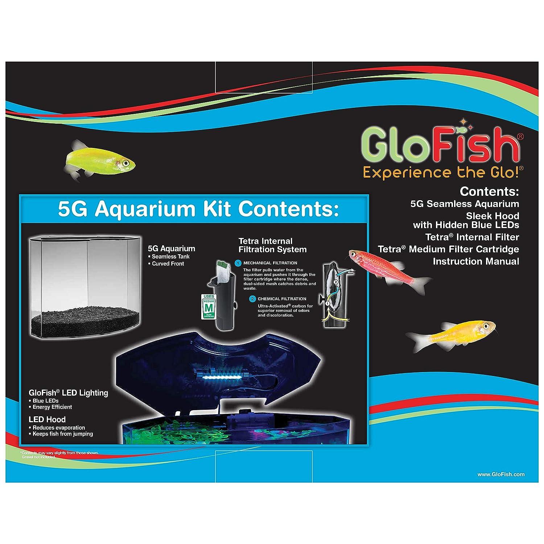 GloFish 29045 Kit Acuario con luz LED Azul, 5-Gallon: Amazon.es: Productos para mascotas