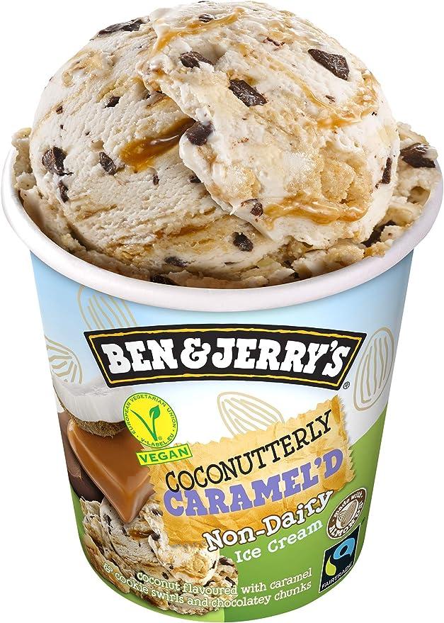 Ben & JerryS Helado Tarrina sin Lactosa Vegana Coconuttery ...