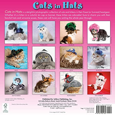 Cats In Hats 2018 Wall Calendar CA0116 Sellers Publishing Inc 9781531901165 Amazon Books