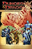 Dungeons & Dragons: Forgotten Realms Classics Volume 3 (Dungeons & Dragons (Idw Quality Paper))