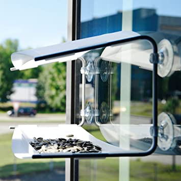 Radius 395 C Vogelhaus Piep Show Transparent: Amazon.de: Haustier