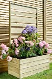 UrbanSlat Wooden Garden Contemporary Flower Planter With Trellis for Climbing Plant Support