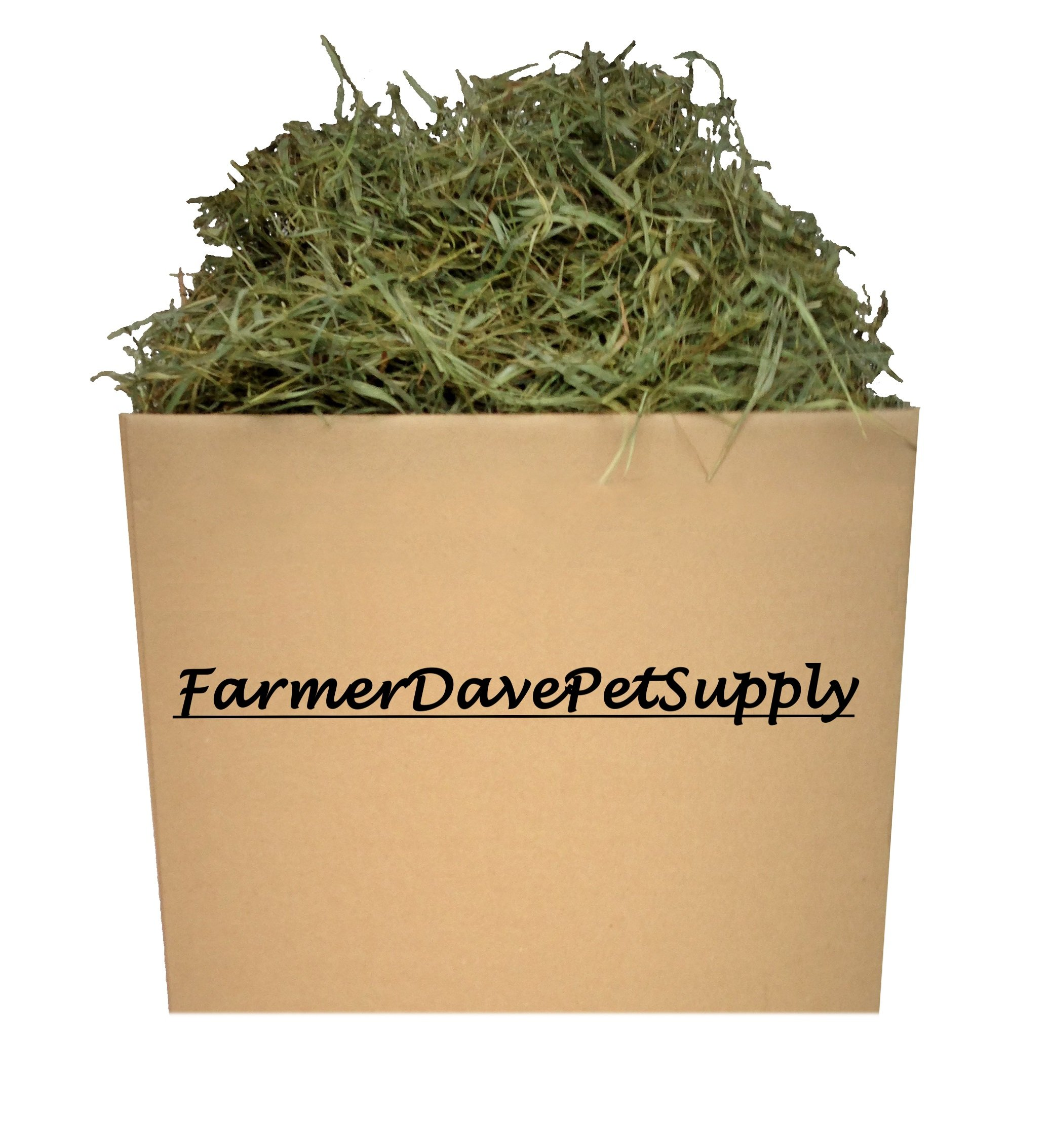 FarmerDavePetSupply 15 Lb Second Cut Timothy Hay, Bunny, Guinea Pig and Chinchilla Hay by FarmerDavePetSupply