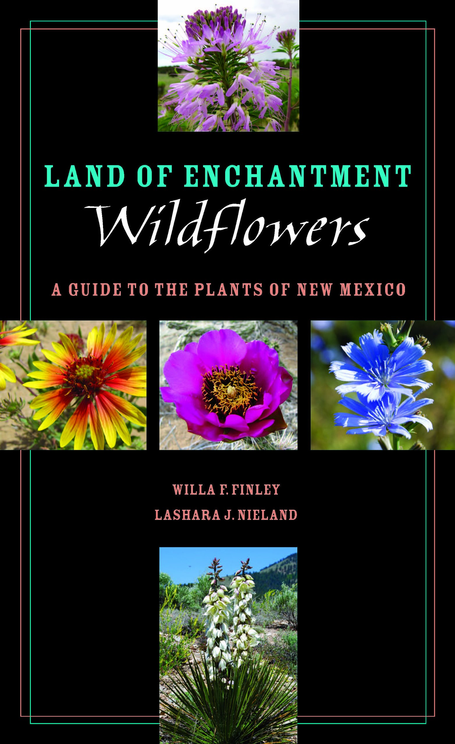 Land of Enchantment Wildflowers: A Guide to the Plants of New Mexico  (Grover E. Murray Studies in the American Southwest): Willa F. Finley, ...
