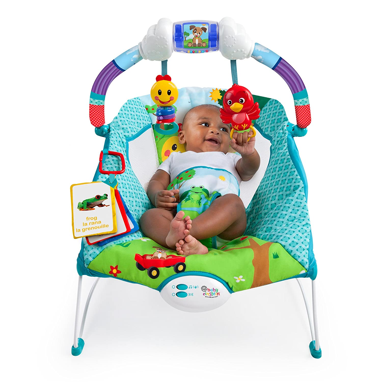 601f601559cb Baby Einstein Caterpillar s Day at the Park Bouncer  Amazon.ca  Baby