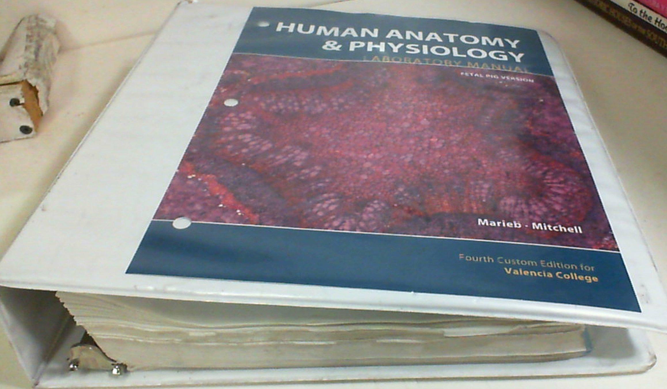 Human Anatomy & Physiology / Laboratory Manual / Fetal Pig Version ...