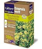 Caillard PFCM18832 Pack de Graines Moutarde Blanc 250 m²