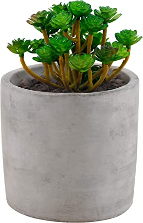 Flower Planters Succulent Plants Pots Ceramic Round Container Set of 3 3//5//7