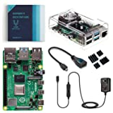 Vilros Raspberry Pi 4 Basic Kit with Fan Cooled Case (4GB) (Tamaño: 4GB)