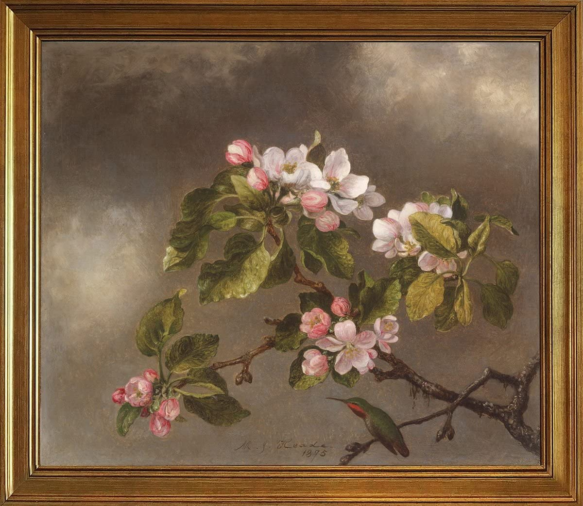 Berkin Arts Classic Framed Martin Johnson Heade Giclee Canvas Print Paintings Poster Reproduction(Hummingbird and Apple Blossoms)