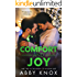 Comfort and Joy (The Windy City Holiday Duet Book 2)