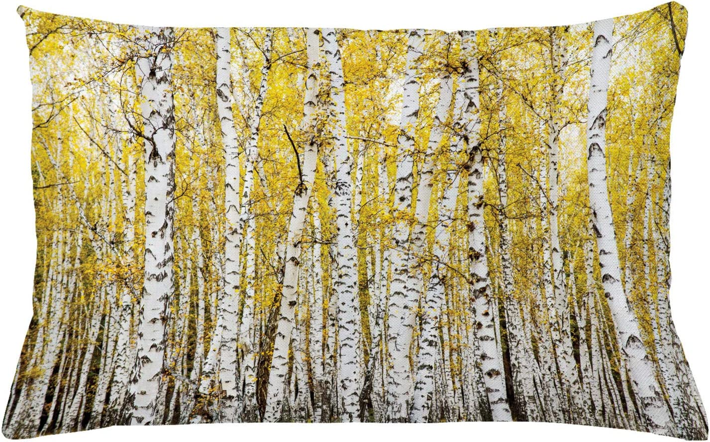 "Ambesonne Forest Throw Pillow Cushion Cover, Autumn Birch Forest Golden Yellow Leaves Woodland October Seasonal Nature Picture, Decorative Rectangle Accent Pillow Case, 26"" X 16"", Yellow Grey"