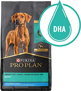 Purina Pro Plan Focus Weight Management Affordable Dog Food