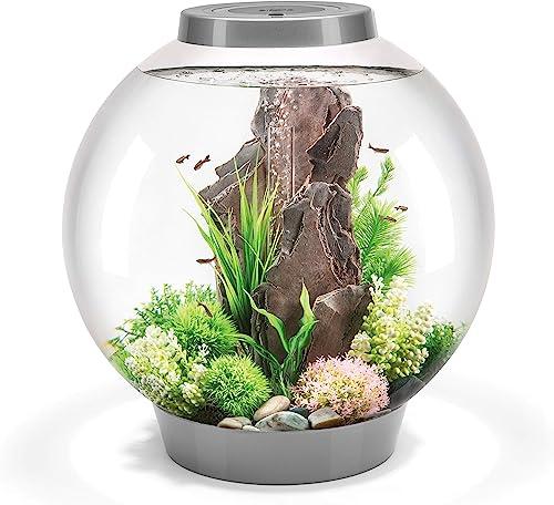 biOrb-CLASSIC-8-Gallon-Freshwater-Shrimp-Tank-with-LED
