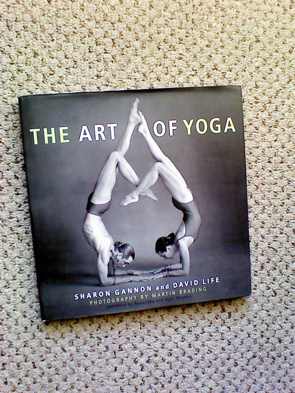 Art of Yoga: Amazon.es: S Gannon: Libros en idiomas extranjeros