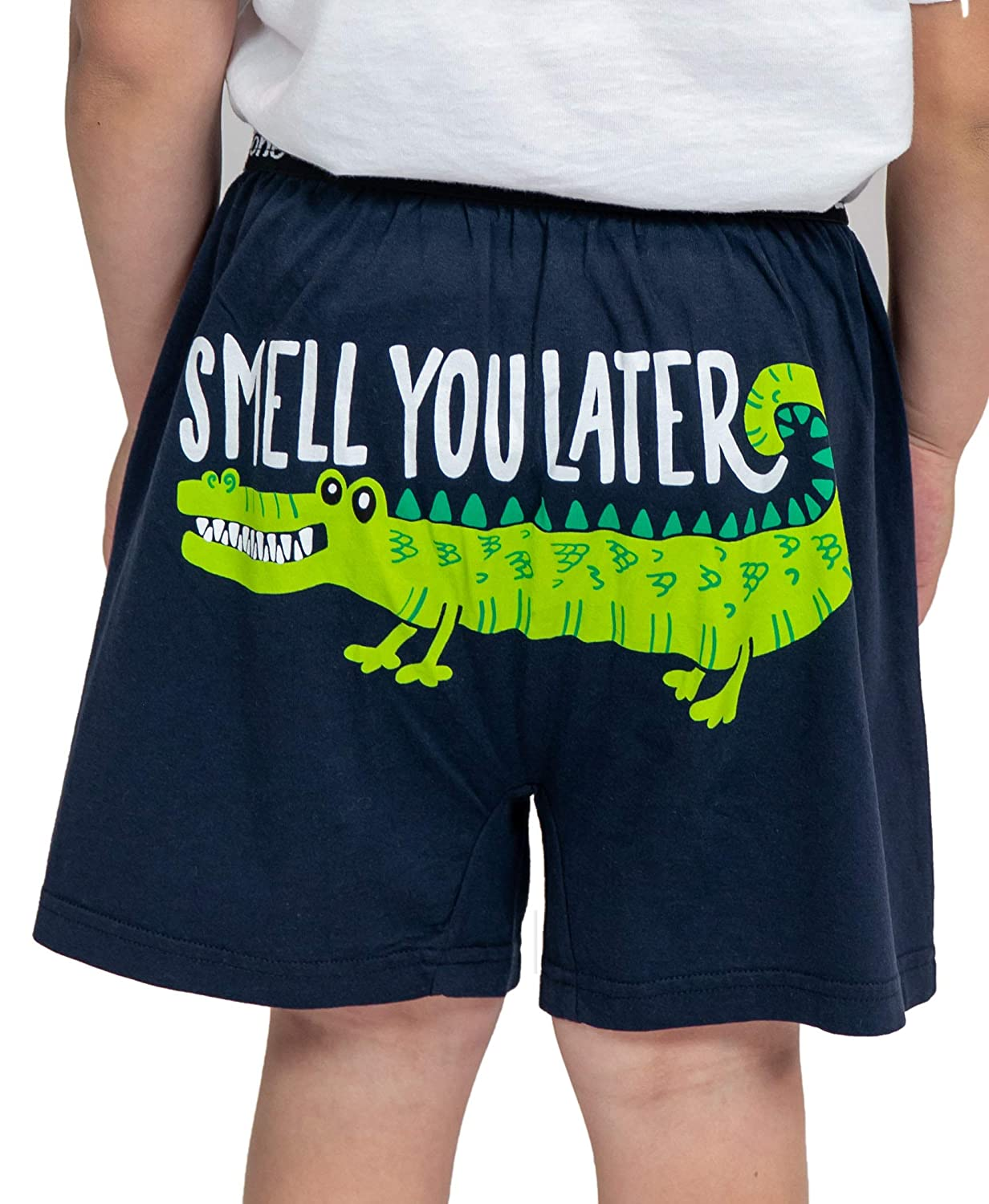 Boys Funny Animal Boxers by LazyOne Kids Comical Underwear