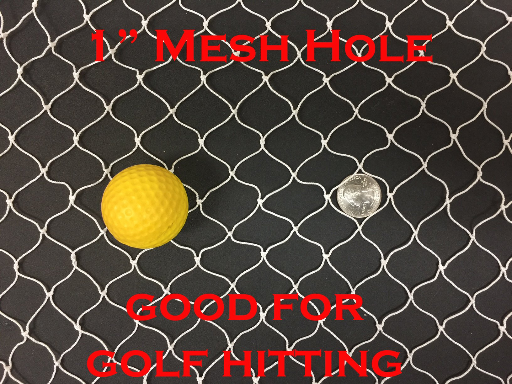 30FT X 25FT Netting, Sport Netting for Golf Backstop, Hockey, La Crosse, Barrier, Sports, Fish by Mnet (Image #1)