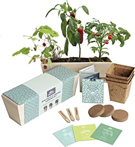Vegetable Garden Starter Kit | Grow Your Own Mini Tomatoes, Peppers and Strawberries | Free Web App Guide | Includes Planter Box, Bamboo Labels, and Nutrient Rich Potting Mix | DIY Gardening Made Easy