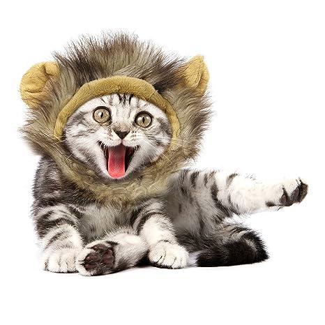 Pawaboo Disfraz de Mascota, Cómoda Mascota de Peluche de Lujo Mascota Gato Cachorro de León
