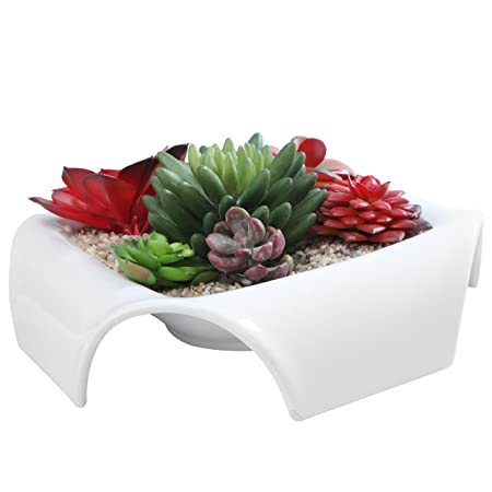 Dekorative Quadratisch Keramik Blumen Topf Sukkulente Pflanzgefäß