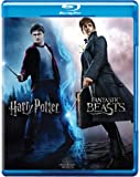 Wizarding World 10 Movies Collection: Harry Potter 1 to 8 + Fantastic Beasts 1 & 2