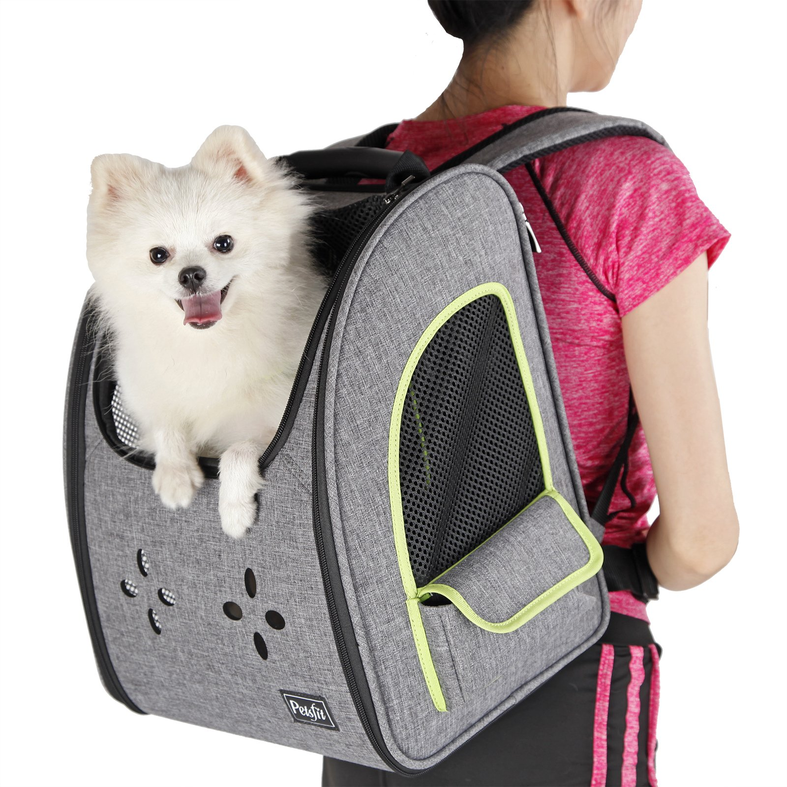 Petsfit Dogs Carriers Backpack for Cat/Dog/Guinea Pig/Bunny Durable and Comfortable Pet Bag by Petsfit (Image #7)