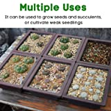MIXC Seed Starter Tray Seedling Trays Plant Grow
