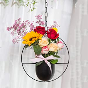 Hanging Plants Plant Hangers Indoor - Metal Hanging Planter, Modern Wall and Ceiling Planter Mid Century Minimalist Flower Pot Holder Planter, Perfect for Home Decoration, Garden, Indoor Outdoor Use