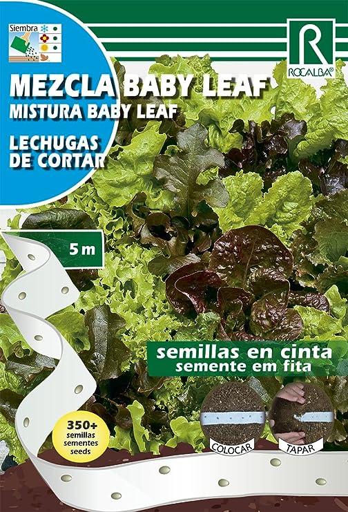 Semillas PRE SEMBRADAS en cintas. Lechugas Mix Baby Leaf: Amazon ...