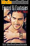 erotic stories Bisex