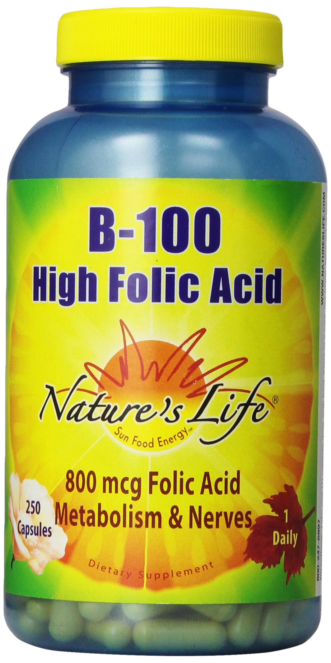 Nature's Life B-100, High Folic Acid,  250 Capsules