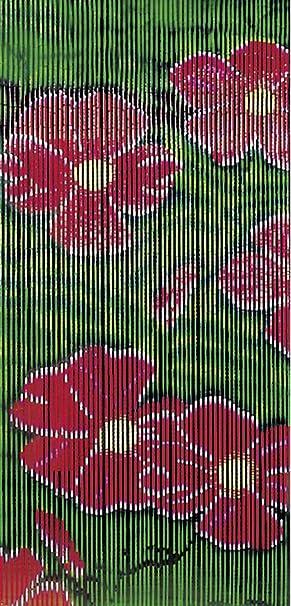 Wenko 5123015500 - Cortina de bambú (90 x 200 cm), diseño de ...