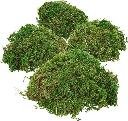 IDEAL PARA CRAFT: ¡El musgo verde decorativo es perfecto como accesorio de artesanía para arreglos f