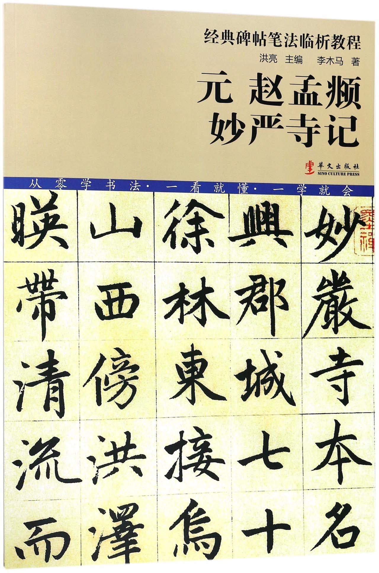 元赵孟妙严寺记/经典碑帖笔法临析教程 ebook