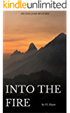 Into the Fire: An Odd Jobs Mystery (Odd Jobs Mysteries Book 1)